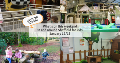 What's on this weekend in and around Sheffield for kids January 12/13