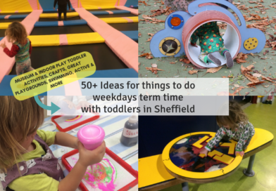 50+ Ideas for things to do on the weekdays term time with toddlers in Sheffield
