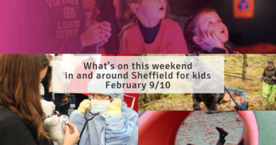 What's on this weekend in and around Sheffield for kids February 9/10