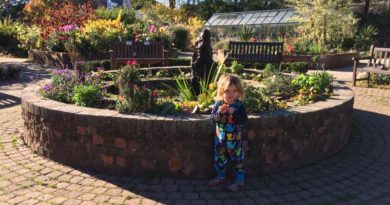 5 things to do at Hillsborough Park