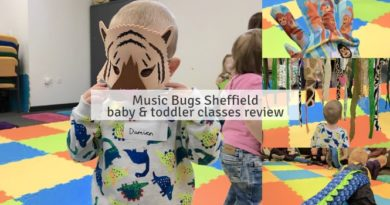 Music Bugs Sheffield baby & toddler classes review