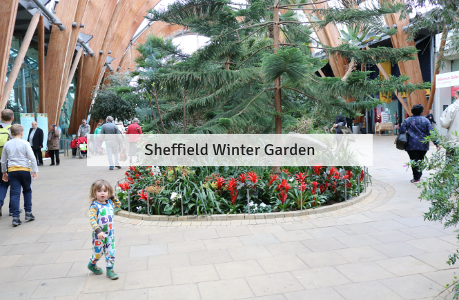 Free: Sheffield Winter Garden