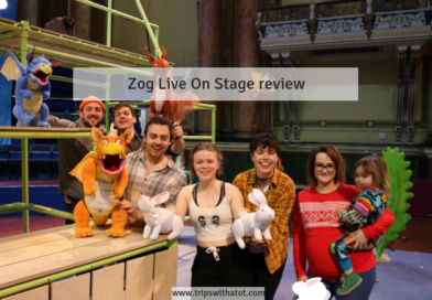 Zog Live On Stage review