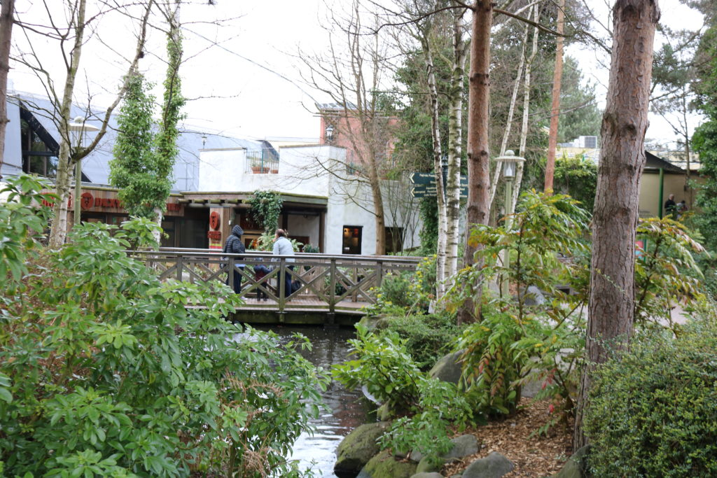 Center Parcs Sherwood Forest family holiday review