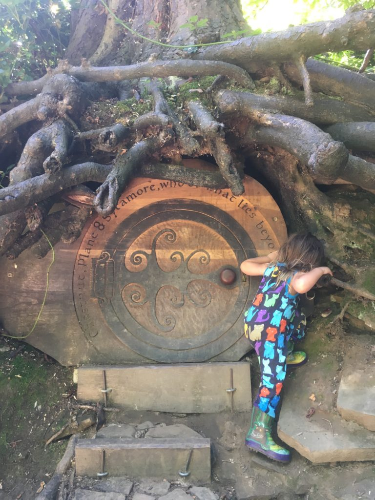 Why Forge Dam to Endcliffe Park is the best family walk in Sheffield Finding the Secret Tree Door at Forge Dam best things to do in Sheffield with kids