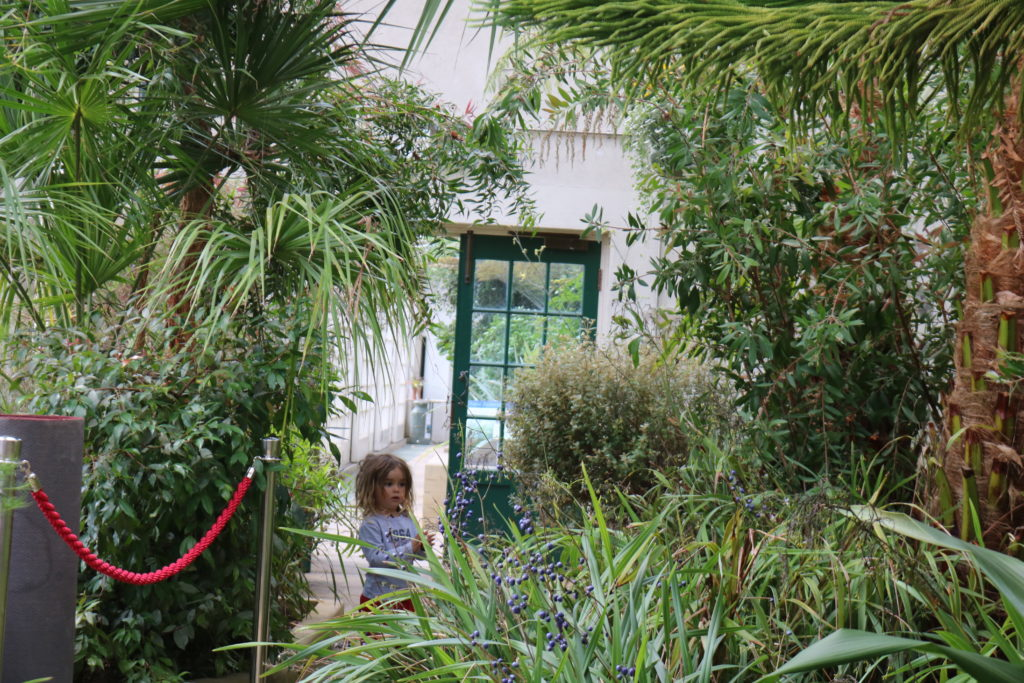 What's on this weekend in and around Sheffield for kids September 7/8 Sheffield botanical gardens