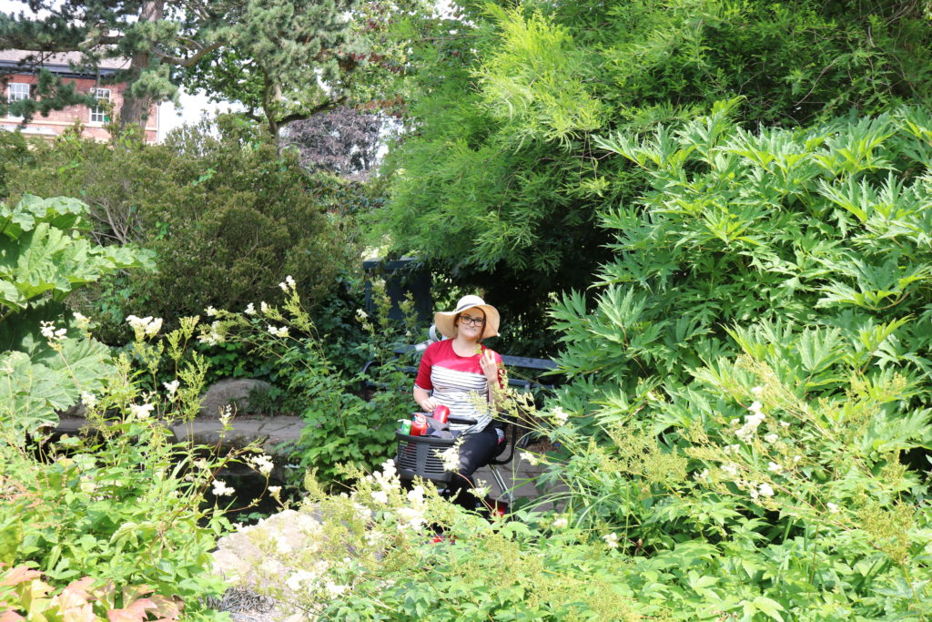 16+ Sheffield Accessible family days out Sheffield Botanical Gardens