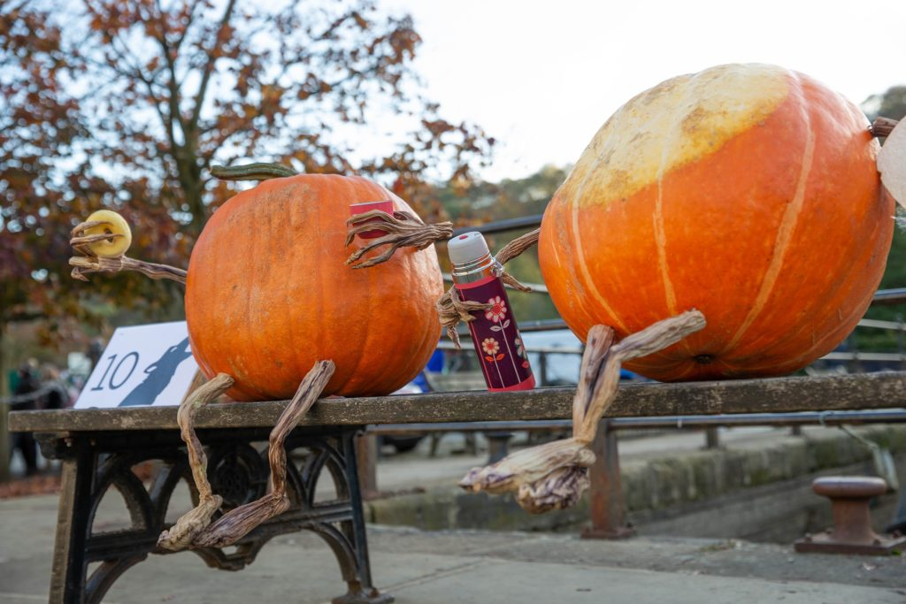 Ultimate Guide: Best Halloween events for Sheffield families 2019
