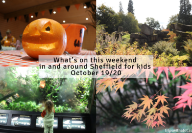 What's on this weekend in and around Sheffield for kids October 19/20